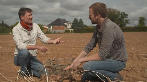 Johannes Böhm und Dieter Voss auf dem Kartoffelfeld