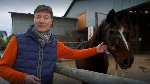 Dieter Voss mit einem Pferd