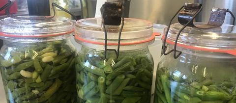 hac - Schnippelbohnen in Glas