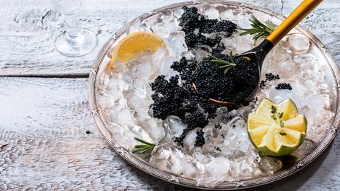 Kaviar