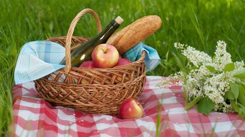 Picknickkorb auf einer Wiese