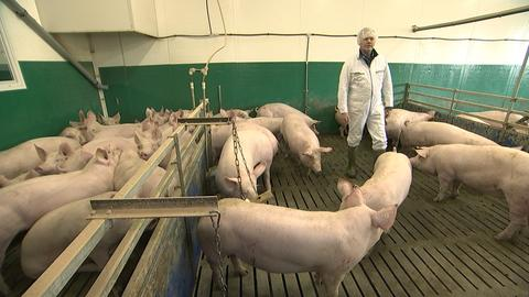 Fleischkontrolleure, Hessenrporter