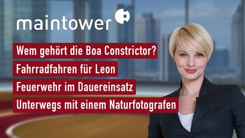 """Die Themen bei """"maintower"""" am 12. August"""