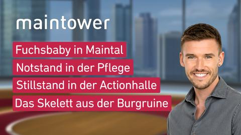 """Die Themen bei """"maintower"""" am 14. April: Fuchsbaby in Maintal, Notstand in der Pflege, Stillstand in der Actionhalle, Das Skelett aus der Burgruine"""