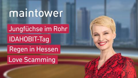 """Die Themen bei """"maintower"""" am 17.05.2021: Jungfüchse im Rohr, IDAHOBIT-Tag, Regen in Hessen, Love Scamming"""