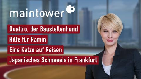 """Die Themen bei """"maintower"""" am 20. August"""