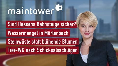 Themen sind u.a.: Sind Hessens Bahnsteige sicher?, Wassermangel in Mörlenbach, Steinwüste statt blühende Blumen, Tier-WG nach Schicksalsschlägen.