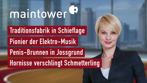 Themen sind u.a.: Traditionsfabrik in Schieflage, Pionier der Elektro-Musik, Penis-Brunnen in Jossgrund, Hornisse verschlingt Schmetterling.