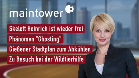 """Themen sind u.a.: Skelett Heinrich ist wieder frei, Phänomen """"Ghosting"""", Gießener Stadtplan zum Abkühlen, Besuch bei der Wildtierhilfe."""