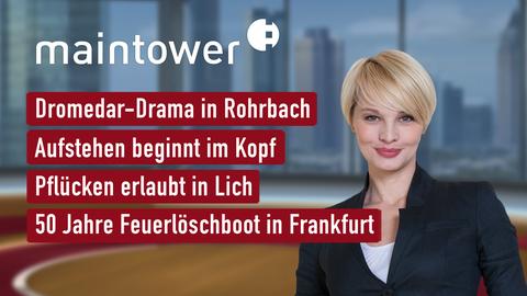 Themen sind u.a.: Dromedar-Drama in Rohrbach, Aufstehen beginnt im Kopf, Pflücken erlaubt in Lich, 50 Jahre Feuerlöschboot in Frankfurt.