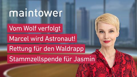 Themen sind u.a.: Vom Wolf verfolgt, Marcel wird Astronaut!, Rettung für den Waldrapp, Stammzellspende für Jasmin.