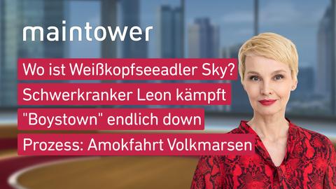 """Themen sind u.a.: Wo ist Weißkopfseeadler Sky?, Schwerkranker Leon kämpft, """"Boystown"""" endlich down, Prozess: Amokfahrt Volkmarsen."""