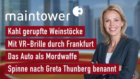 Themen sind u.a.: Kahl gerupfte Weinstöcke, Mit VR-Brille durch Frankfurt, Auto als Mordwaffe, Spinne nach Greta Thunberg benannt