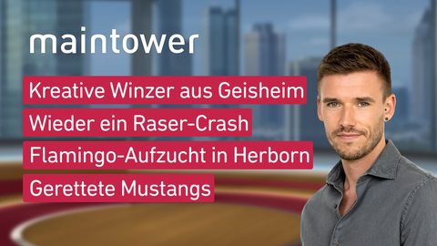 """Die Themen bei """"maintower"""" am 21. Juli: Kreative Winzer aus Geisenheim, Wieder ein Raser-Crash, Flamingo-Aufzucht in Herborn, Gerettete Mustangs"""
