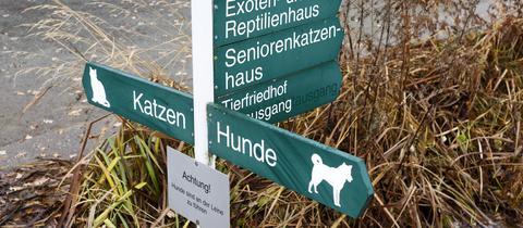 Gelände eines Tierheims