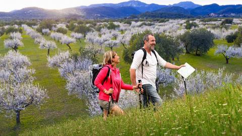 Ein Paar wandert durch eine Wiese - dahinter Mandelbäume mit Blüten