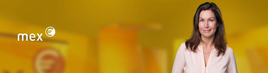 Bannerbild mex
