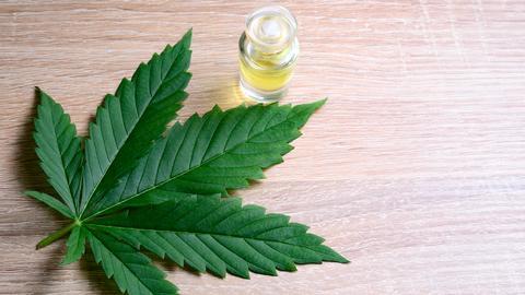 CBD-Öl wird aus Cannabis hergestellt.