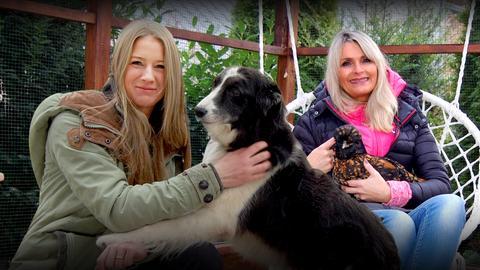 herkules-Moderatorin Susanne Barfuß will wissen, wie die Therapie mit Hunden, Pferden, Ziegen und Hühnern funktioniert und ob sie den Menschen wirklich hilft.