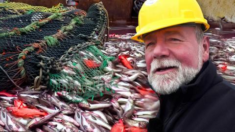 Frosta: Vom Fischdampfer zum Fertiggericht: Ein Protagonist vor Fisch in Netzen.