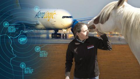 Die Protagonistin zusammen mit einem der geretteten Mustangs auf dem Rollfeld, im Hintergrund eine Boeing.
