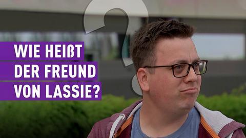 strassen star-Kandidat mit Schriftzug: Wie heißt der Freund von Lassie?