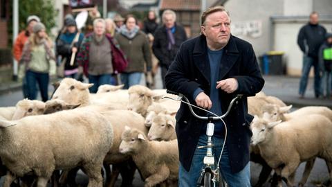 Ermittler Frank Thiel fährt mit dem Rad zwischen Schafen