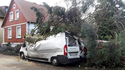 Ein Baum fiel während des Unwetters am Sonntag auf einen Transporter in Rodgau-Jügesheim (Kreis Offenbach)