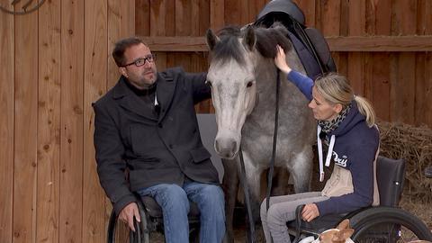 Timo Ameruoso und Stephanie Völker bei einem Pferd.