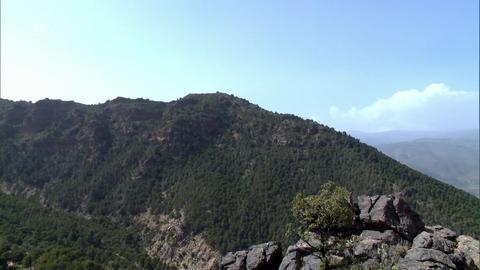 Sierra Nevada (12)   Durch die Wildnis