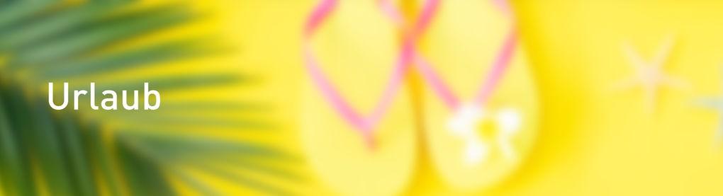 Flipflops unter Palmen