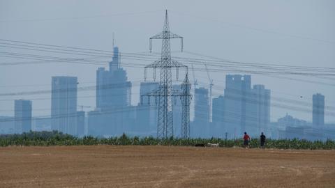 Die Skyline von Frankfurt und ein Strommast zeichnen sich hinter einem bereits abgeernteten Rapsfeld ab.