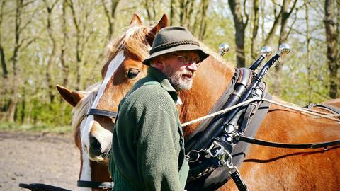 Ein Mann steht vor einem Pferd