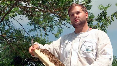Der Berufsimker Oliver Hohmann aus Gudensberg-Gleichen produziert Honige mit verschiedenen Geschmacksrichtungen.