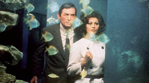 Yasmin Azir (Sophia Loren) und der Literaturprofessor David Pollock (Gregory Peck) versuchen ihren Verfolgern im Aquarium des Zoos zu entkommen.
