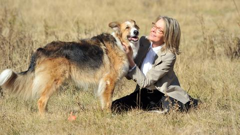 Für Beth (Diane Keaton) wird ihr Hund Freeway zu einem treuen und ständigen Begleiter.