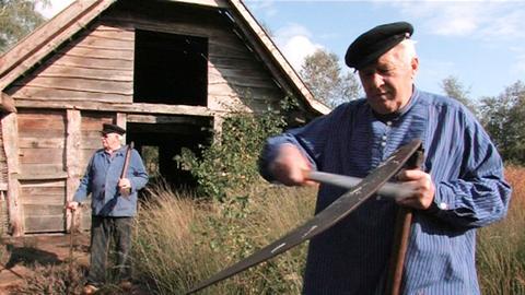 Die Emsländer Moorbauern ernteten den Buchweizen einst mit der Sense – im Emsland Moormuseum wird die mühsame Methode bis heute demonstriert.