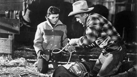 Charlie (Dianne Foster) hilft Grant (James Stewart) beim Verschnüren eines Gangsters.