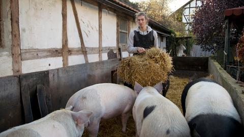 Malte Groß hat mit seinen Freunden den Biohof seines Vaters übernommen.