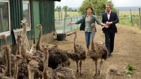 Anna (Janina Hartwig) zeigt dem Journalist Marc (Florian Fitz) ihre Straußenfarm.