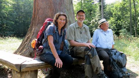 Das Ziel ist ein Baum mit Migrationshintergrund: V.li. Adele Neuhauser, Peter Wohlleben und Denis Scheck vor einem beeindruckenden Mammutbaum im Naturpark Schönbuch.