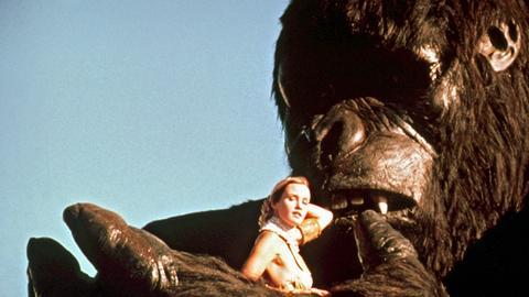 Dwan (Jessica Lange) verliert langsam die Scheu vor ihrem tierischen Entführer King Kong.
