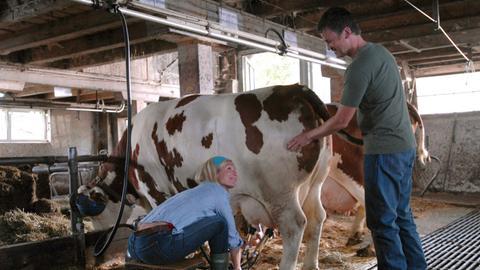 Mit Freude beobachtet Karl (Timothy Peach), welchen Spaß die Städterin Elisabeth (Claudine Wilde) bei der Bauernhof-Arbeit hat.