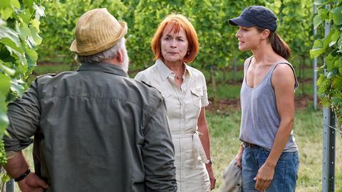 Anne (Henriette Richter-Röhl, re.) bekommt Probleme auf dem Weingut von Johannes Roscher (Achim Stellwagen) und Ehefrau Simone (Andrea Wolf).