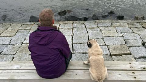 Frida und Michael Kessler blicken auf Langeneß in die Weiten der Nordsee.