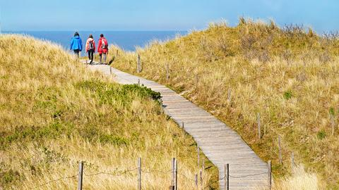 Drei Menschen die einen hölzernen Pfad durch die Dünen Richtung Meer wandern.