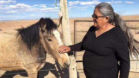 Zwei Cowboys auf ihren Pferden und Schafzüchterin und Navajo-Frau Irene Bennalley (Collage).