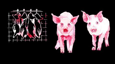 Zwei Aquarell-Schweine auf dunklem Hintergrund. Über ihnen hängen vier gemalte Schweinekörper an Haken. Text: 7 Tage Schweine schlachten.