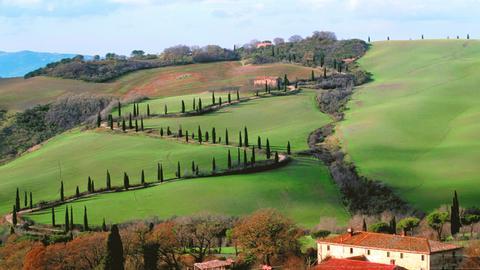 Landschaft im Val d'Orcia im südlichen Teil der Provinz Siena in der Toskana.
