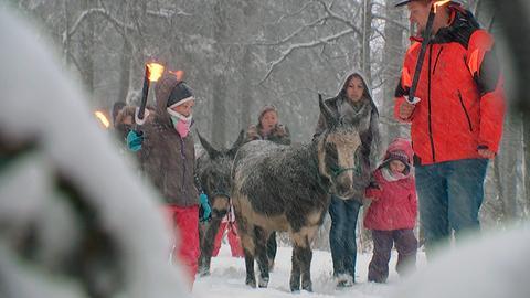 Eselwanderung im Schnee.